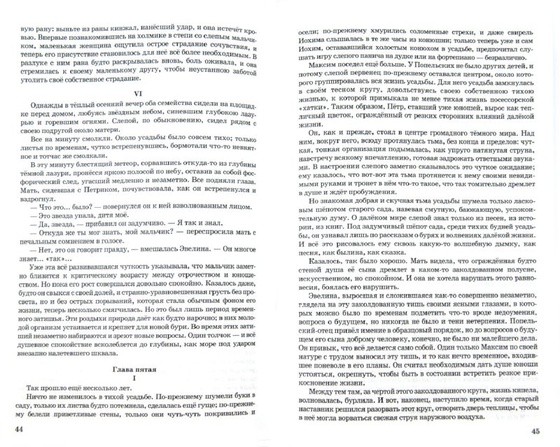 Иллюстрация 1 из 11 для Слепой музыкант - Владимир Короленко   Лабиринт - книги. Источник: Лабиринт