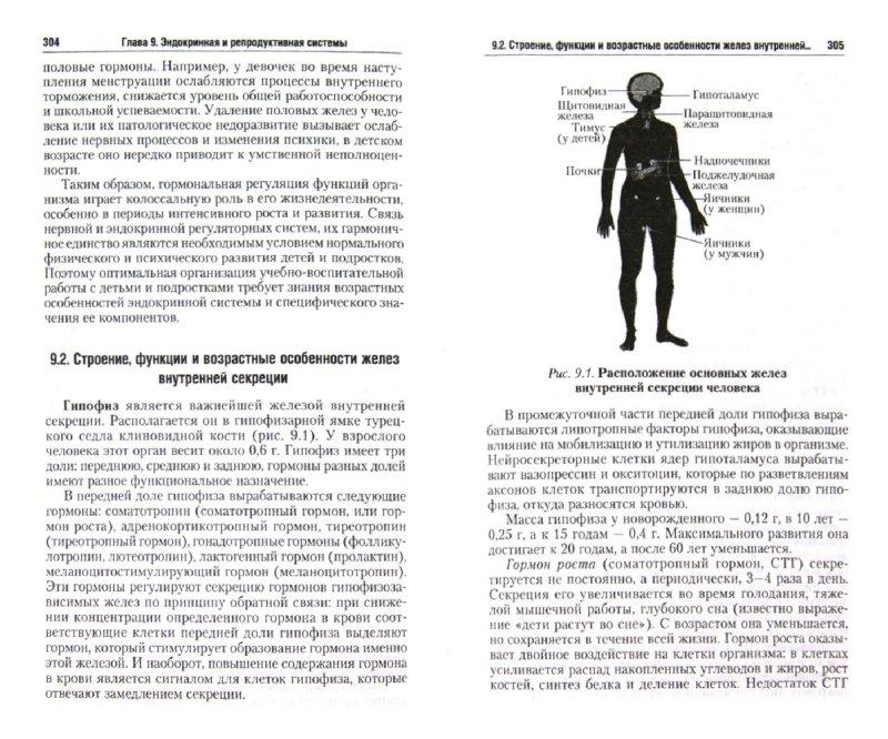 Иллюстрация 1 из 6 для Анатомия и возрастная физиология. Учебник для бакалавров - А.О. Дробинская   Лабиринт - книги. Источник: Лабиринт