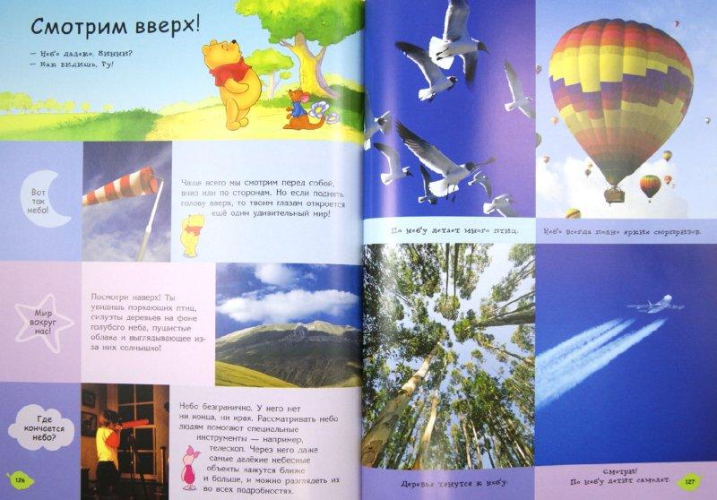 Иллюстрация 1 из 35 для Природа. Моя первая энциклопедия | Лабиринт - книги. Источник: Лабиринт