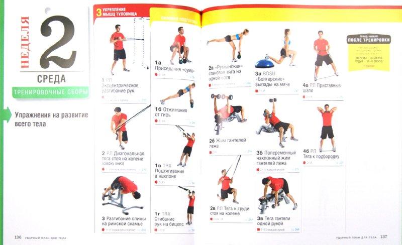 Иллюстрация 1 из 4 для Ударный план для тела - Деркин, Борнстайн, Зиммерман | Лабиринт - книги. Источник: Лабиринт