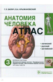Атлас анатомии человека. В 3-х томах. Том 3 шилкин в филимонов в анатомия по пирогову атлас анатомии человека том 1 верхняя конечность нижняя конечность cd