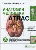 Атлас анатомии человека. В 3-х томах. Том 3