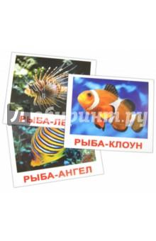 "Комплект карточек ""Обитатели воды"" (16,5х19,5 см)"