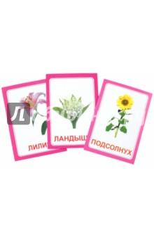 """Логопедические карточки """"Логопедка Л"""""""