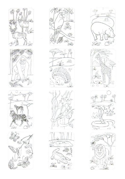 Иллюстрация 1 из 12 для Книжки-невидимки. Животные   Лабиринт - книги. Источник: Лабиринт