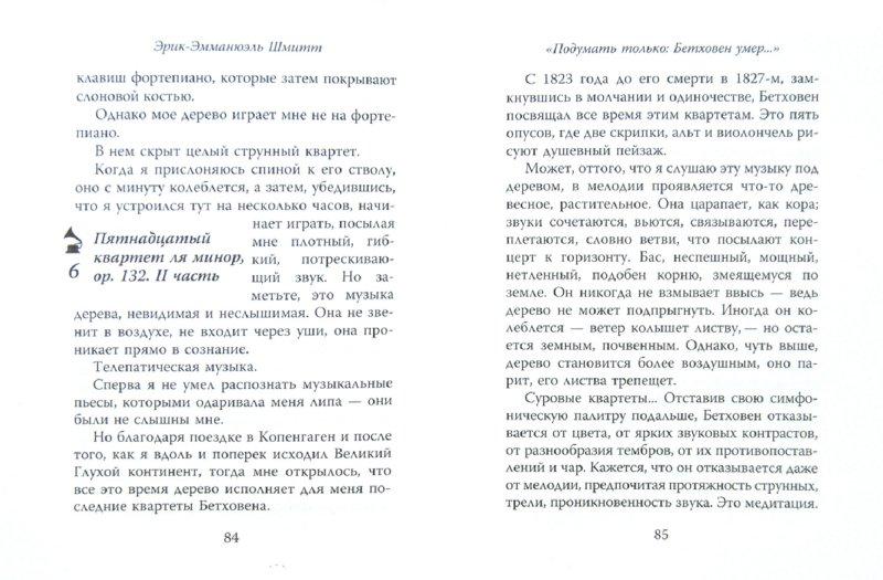 Иллюстрация 1 из 12 для Кики ван Бетховен (+CD) - Эрик-Эмманюэль Шмитт | Лабиринт - книги. Источник: Лабиринт