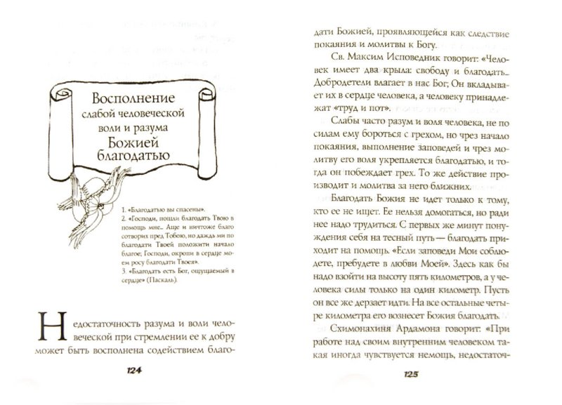 Иллюстрация 1 из 7 для Плоды истинного покаяния - Савва Схиигумен | Лабиринт - книги. Источник: Лабиринт