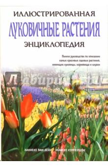 Луковичные растения. Иллюстрированная энциклопедия клубни георгин у садоводов