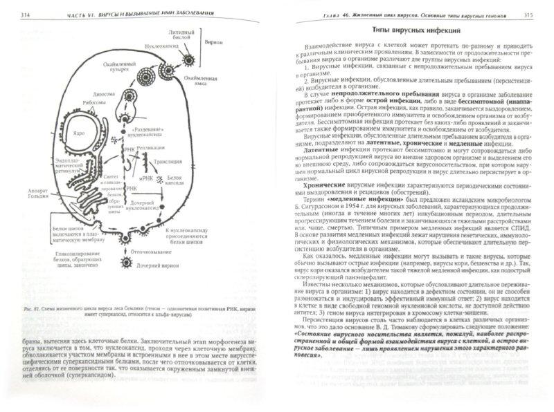 Иллюстрация 1 из 29 для Медицинская микробиология, иммунология и вирусология - Коротяев, Бабичев | Лабиринт - книги. Источник: Лабиринт