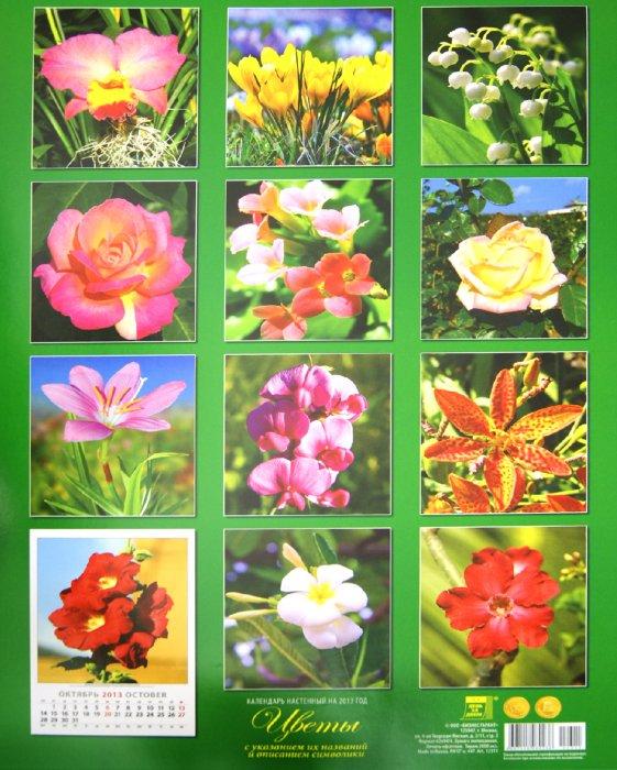 """Иллюстрация 1 из 2 для Календарь 2013 """"Цветы"""" (12311)   Лабиринт - сувениры. Источник: Лабиринт"""