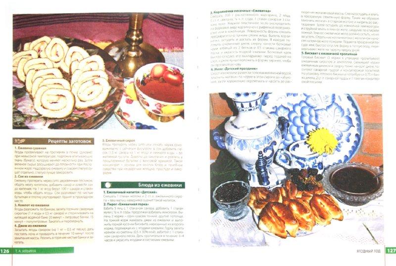 Иллюстрация 1 из 16 для Грибы, ягоды и полезные травы - Татьяна Ильина | Лабиринт - книги. Источник: Лабиринт