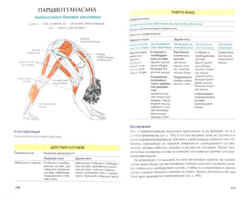 Иллюстрация 1 из 4 для Анатомия йоги - Каминофф, Мэтьюз | Лабиринт - книги. Источник: Лабиринт