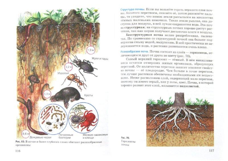 Иллюстрация 1 из 17 для Введение в естественно-научные предметы. Природа. Неживая и живая. 5 класс. Учебник. ФГОС - Пакулова, Иванова | Лабиринт - книги. Источник: Лабиринт