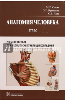 Анатомия человека: атлас: учебное пособие для педагогических вузов анна спектор большой иллюстрированный атлас анатомии человека