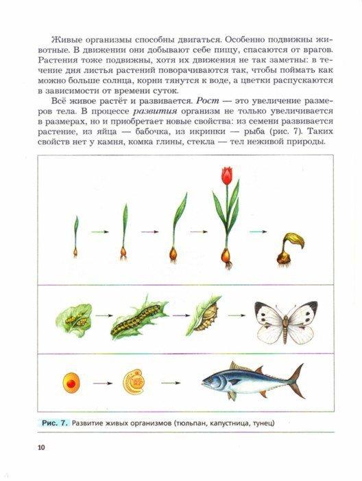 Иллюстрация 1 из 19 для Биология. 5 класс. Учебник. ФГОС - Пономарева, Корнилова, Николаев | Лабиринт - книги. Источник: Лабиринт