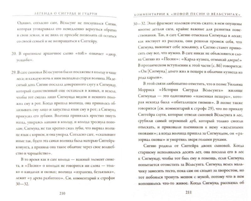 Иллюстрация 1 из 15 для Легенда о Сигурде и Гудрун - Толкин Джон Рональд Руэл | Лабиринт - книги. Источник: Лабиринт