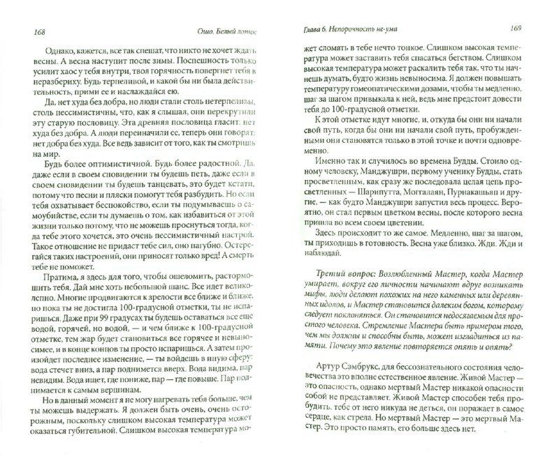 Иллюстрация 1 из 6 для Белый лотос: Беседы о Мастере дзэн Бодхитхарме - Ошо Багван Шри Раджниш | Лабиринт - книги. Источник: Лабиринт