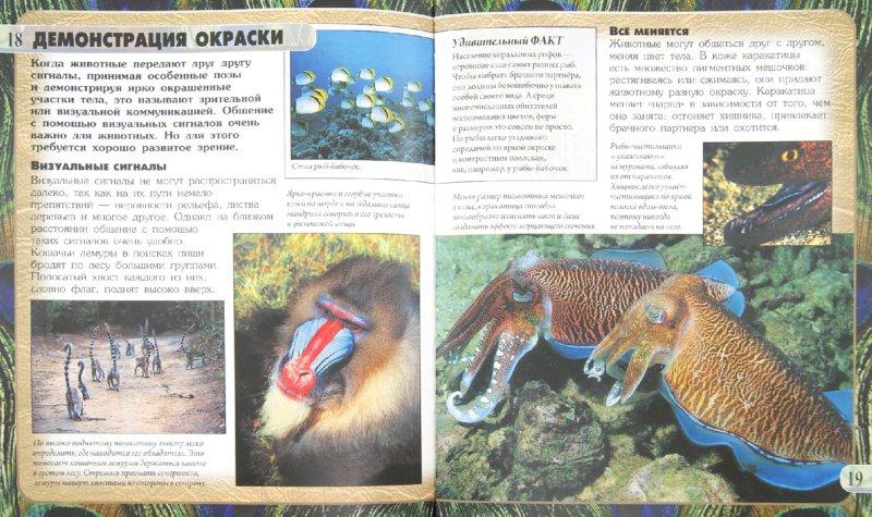 Иллюстрация 1 из 16 для Общение животных - Анита Ганери | Лабиринт - книги. Источник: Лабиринт