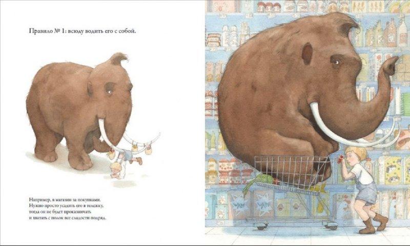 Иллюстрация 1 из 21 для Как воспитать домашнего мамонта - Квентин Гребан   Лабиринт - книги. Источник: Лабиринт