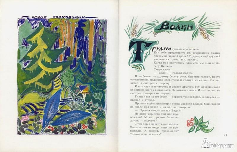 Иллюстрация 1 из 67 для Жеребенок - Юрий Коваль | Лабиринт - книги. Источник: Лабиринт