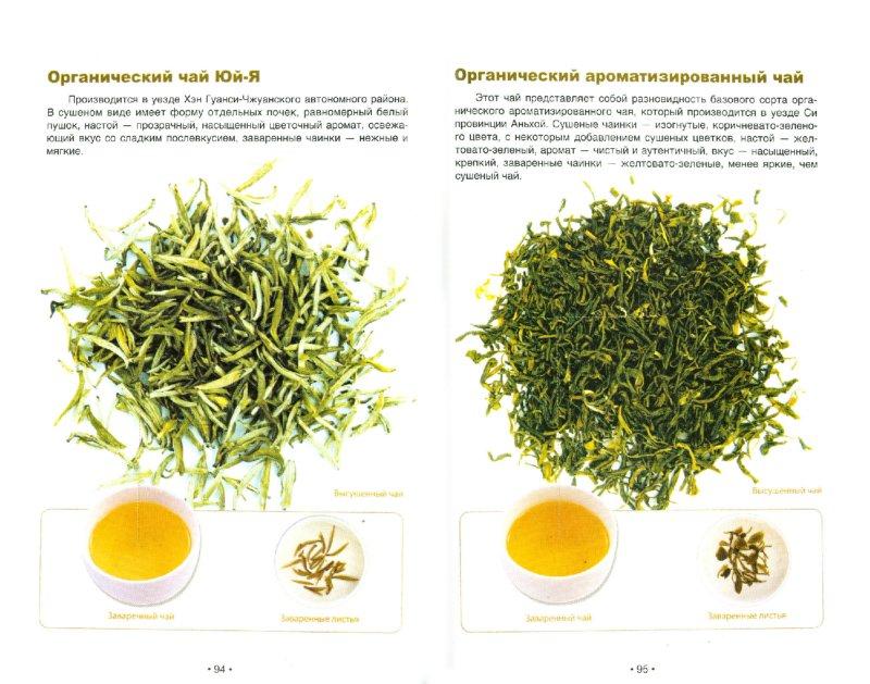 Иллюстрация 1 из 20 для Зеленый чай: оцените китайский чай - Хун Ли   Лабиринт - книги. Источник: Лабиринт