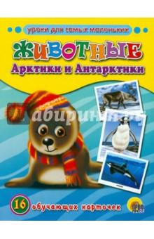 Обучающие карточки. Животные Арктики и Антарктики