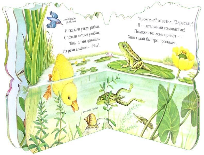 Иллюстрация 1 из 2 для Здравствуй, лягушонок. Малышам о природе - Екатерина Карганова | Лабиринт - книги. Источник: Лабиринт