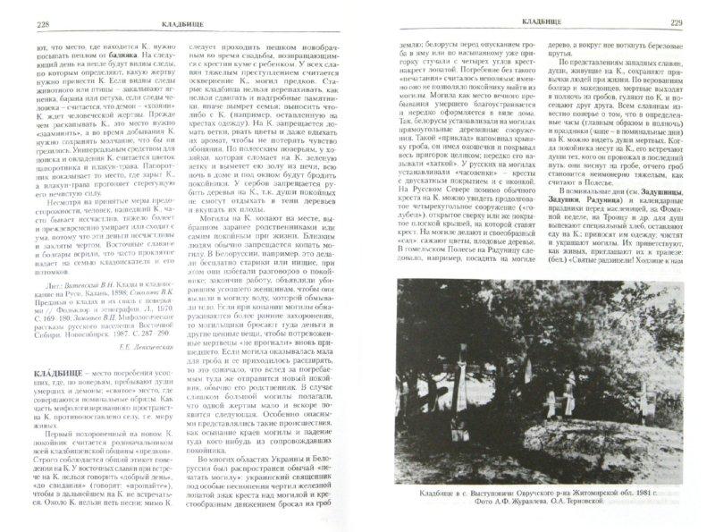Иллюстрация 1 из 28 для Славянская мифология. Энциклопедический словарь | Лабиринт - книги. Источник: Лабиринт