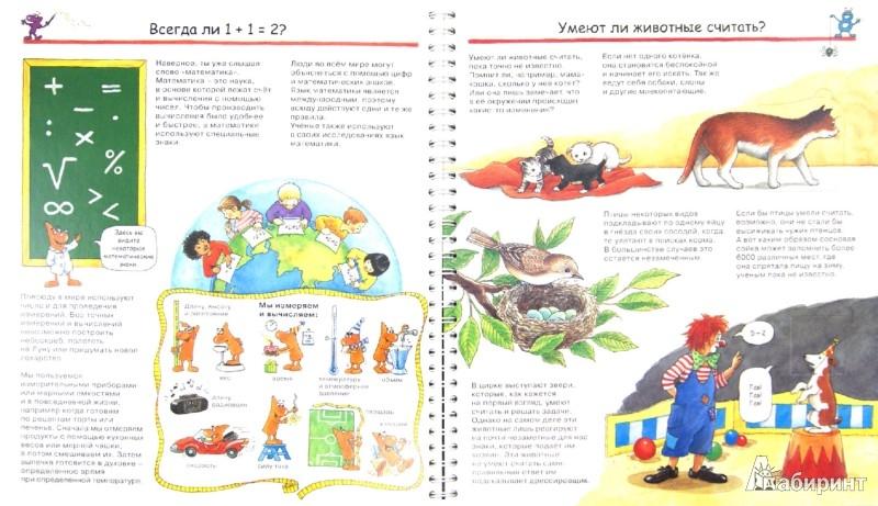 Иллюстрация 1 из 55 для Цифры и числа - Ангела Вайнхольд   Лабиринт - книги. Источник: Лабиринт