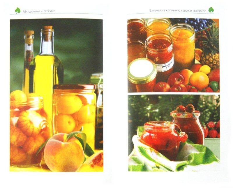 Иллюстрация 1 из 6 для Все о хранении и заготовке овощей и фруктов - Максим Жмакин | Лабиринт - книги. Источник: Лабиринт