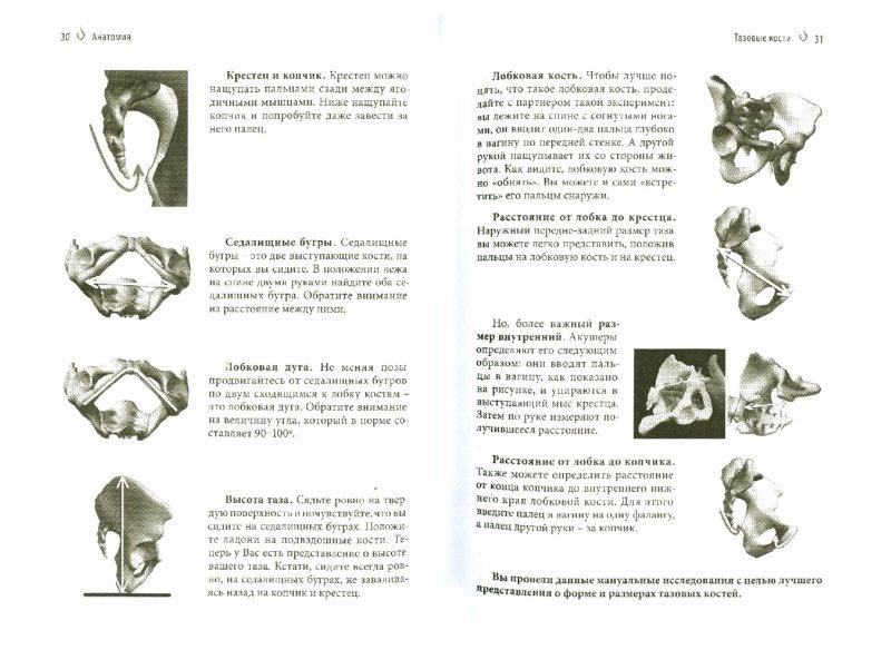 Иллюстрация 1 из 14 для Система Вагитон - Юрий Корнев | Лабиринт - книги. Источник: Лабиринт