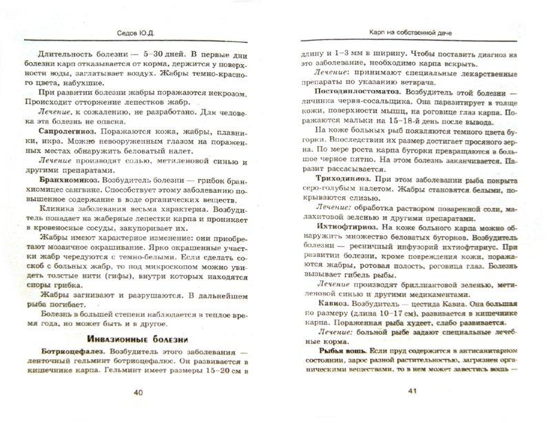 Иллюстрация 1 из 13 для Карп на собственной даче: разведение, содержание, уход - Юрий Седов | Лабиринт - книги. Источник: Лабиринт