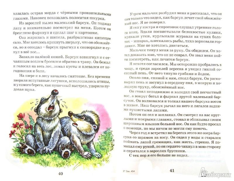 Иллюстрация 1 из 19 для Лисичкин хлеб. Рассказы - Пришвин, Паустовский, Черный, Пантелеев | Лабиринт - книги. Источник: Лабиринт