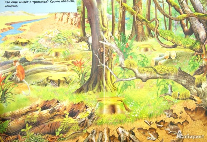 Иллюстрация 1 из 27 для Серебряные наклейки. Дикие животные | Лабиринт - книги. Источник: Лабиринт