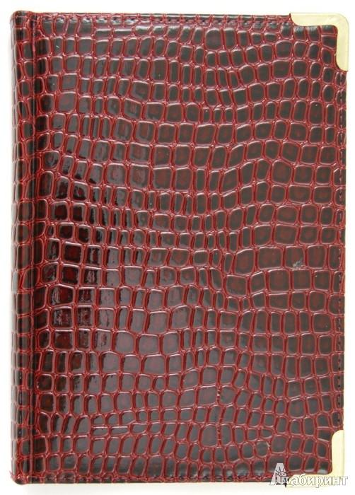 """Иллюстрация 1 из 2 для Ежедневник полудатированный 192 листа """"Iguana"""", А5, бордовый (ЕК519248)   Лабиринт - канцтовы. Источник: Лабиринт"""