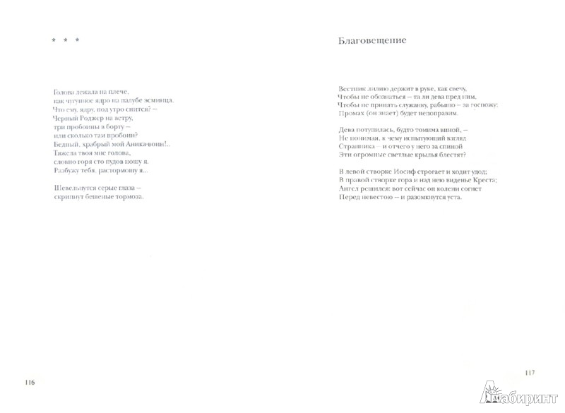 Иллюстрация 1 из 7 для Двойная флейта. Избранные и новые стихотворения - Григорий Кружков | Лабиринт - книги. Источник: Лабиринт
