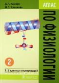 Атлас по физиологии. В 2-х томах. Том 2. Учебное пособие