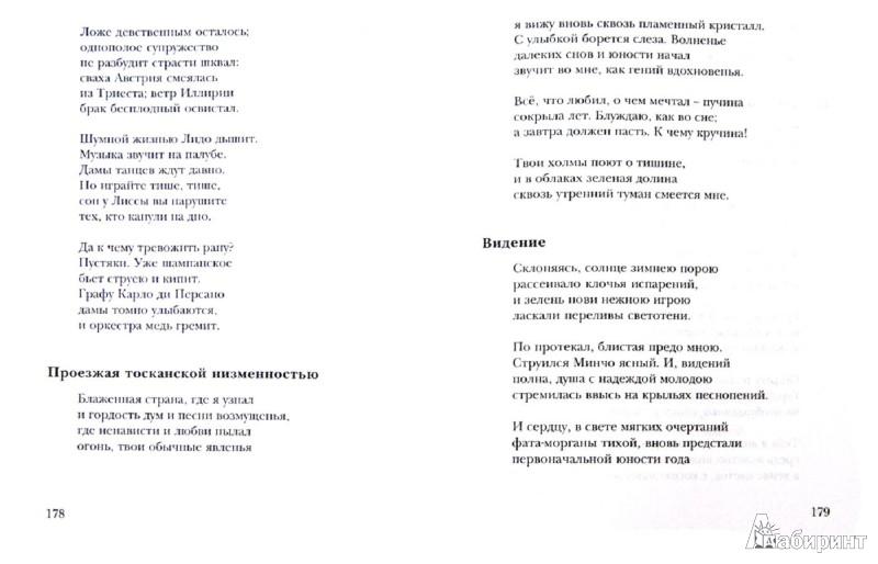 Иллюстрация 1 из 7 для Трудись, огонь!.. Избранные переводы - Илья Голенищев-Кутузов | Лабиринт - книги. Источник: Лабиринт