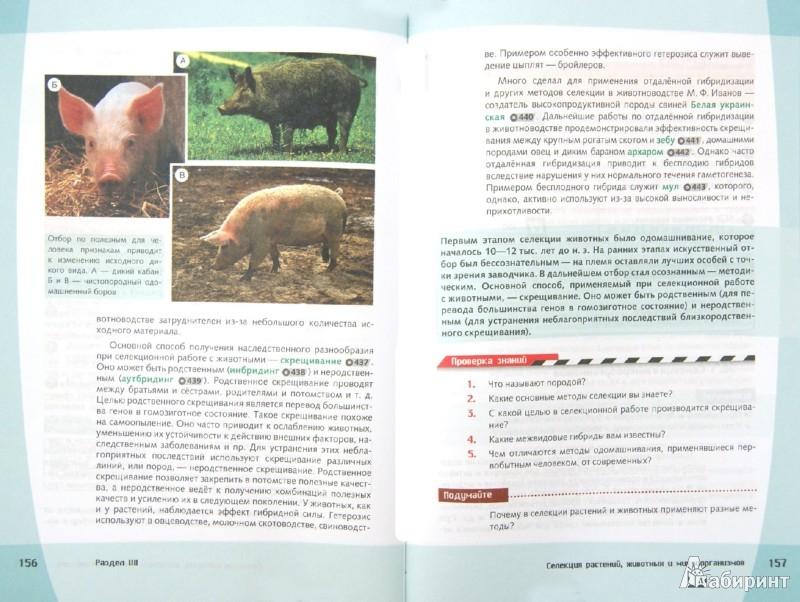 Иллюстрация 1 из 6 для Биология. Общие закономерности. 9 класс. Учебник. ФГОС (+CD) - Захаров, Мамонтов, Сивоглазов | Лабиринт - книги. Источник: Лабиринт