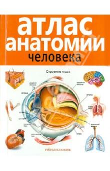 Атлас анатомии человека шилкин в филимонов в анатомия по пирогову атлас анатомии человека том 1 верхняя конечность нижняя конечность cd