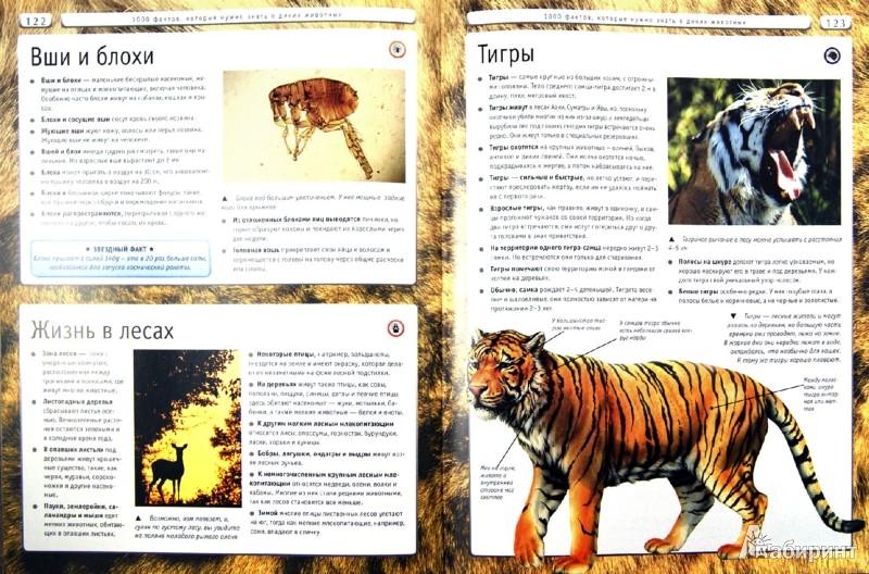 Иллюстрация 1 из 7 для Природа. Человек. Наука | Лабиринт - книги. Источник: Лабиринт