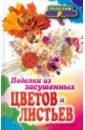 Плотникова Татьяна Федоровна Поделки из засушенных цветов и листьев