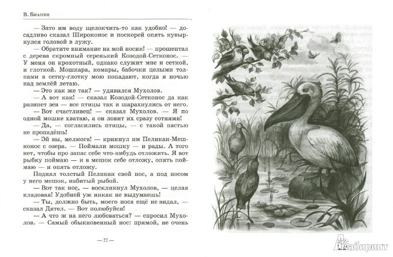 Иллюстрация 1 из 26 для Лесные домишки. Рассказы. Сказки. Повести - Виталий Бианки | Лабиринт - книги. Источник: Лабиринт