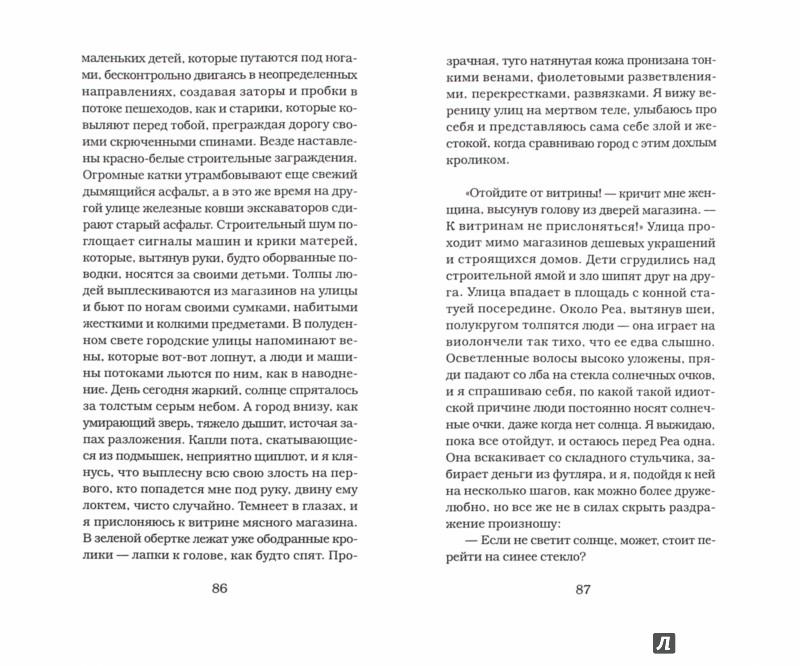 Иллюстрация 1 из 17 для Зов морской раковины - Зое Дженни | Лабиринт - книги. Источник: Лабиринт