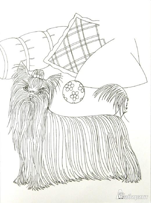 Иллюстрация 1 из 7 для Собаки. Волшебные прозрачные страницы с наклейками - Н. Истомина | Лабиринт - книги. Источник: Лабиринт