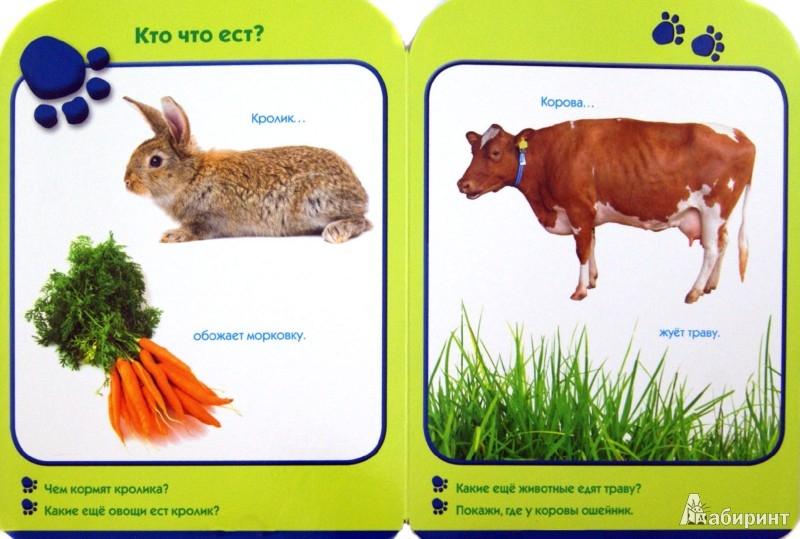 Иллюстрация 1 из 12 для Чей это домик? Развиваем малыша (1-2 года) | Лабиринт - книги. Источник: Лабиринт