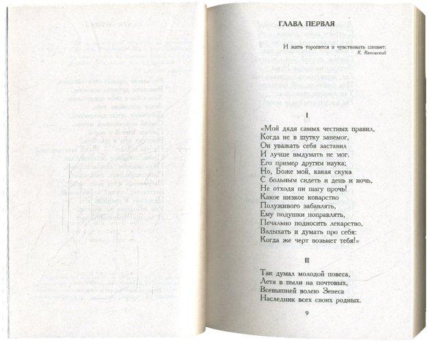 Иллюстрация 1 из 13 для Евгений Онегин - Александр Пушкин   Лабиринт - книги. Источник: Лабиринт