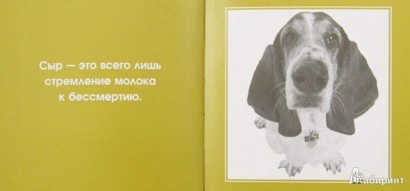 Иллюстрация 1 из 12 для Спросите у собаки: что думают собаки о людях и о себе | Лабиринт - книги. Источник: Лабиринт