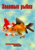 Золотые рыбки. Содержание и уход