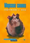 Морские свинки. Содержание и уход